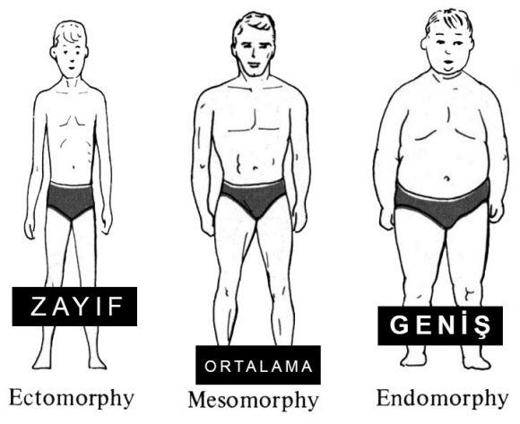 Erkek Vücut Tipleri